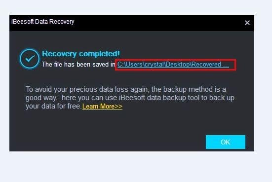 iBeesoft Data Recovery screenshot